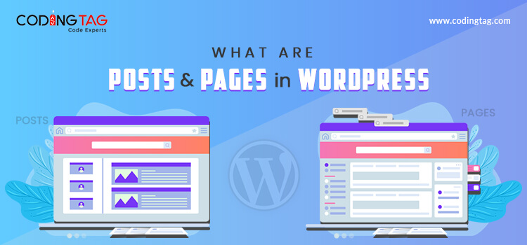 What are Posts and Pages in WordPress