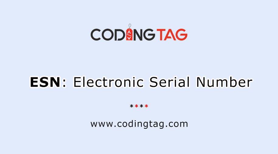 Electronic Serial Number (ESN)