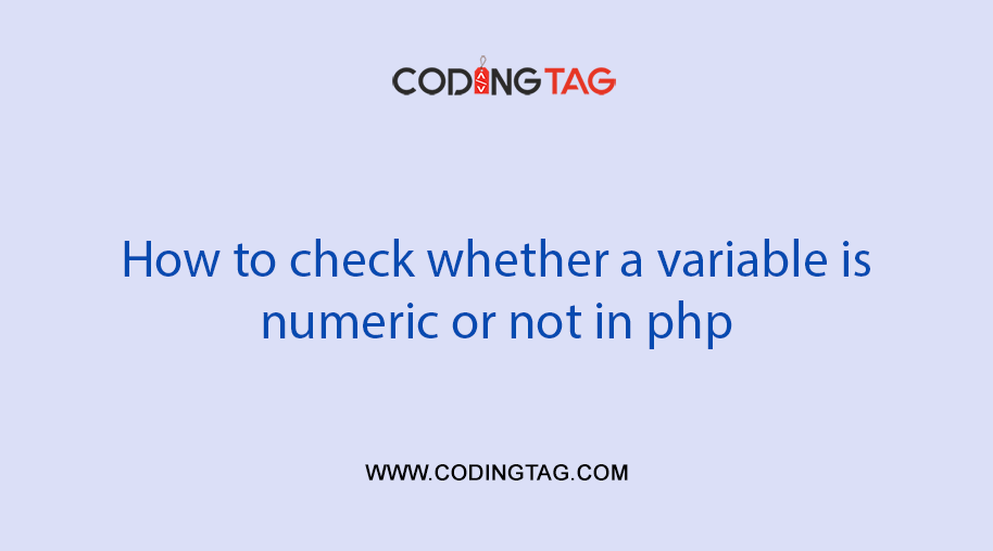 How to check whether a variable is numeric or not in php