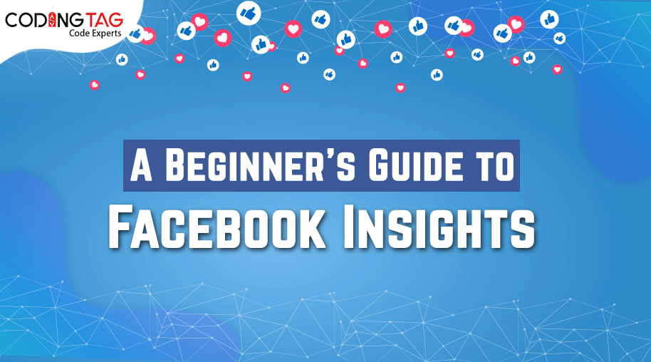 A Beginner's Guide to Facebook Insights